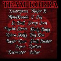 Banner image for all members of Team Kobra