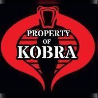 team kobra banner image of a cobra snake