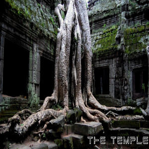 "Image of an old tree in the courtyard of an ancient temple for a hip hop rap beat titled ""The Temple"""